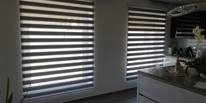 zebra zavesa remy